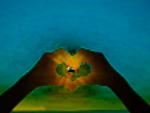 HeartandSun
